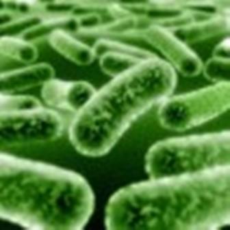 Убий микробите с антибактериален печат
