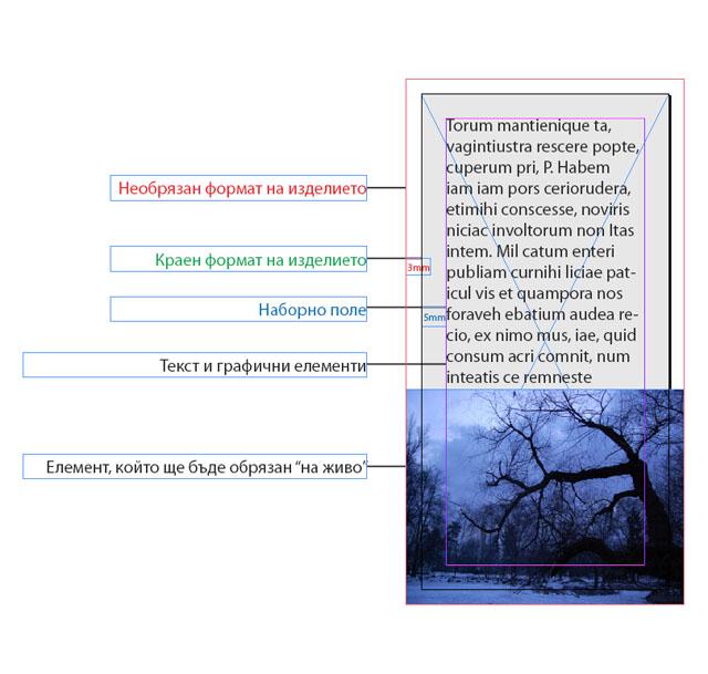 """дефиниране на наддаване, наборно поле и елемент, който ще бъде обрязан """"на живо"""""""