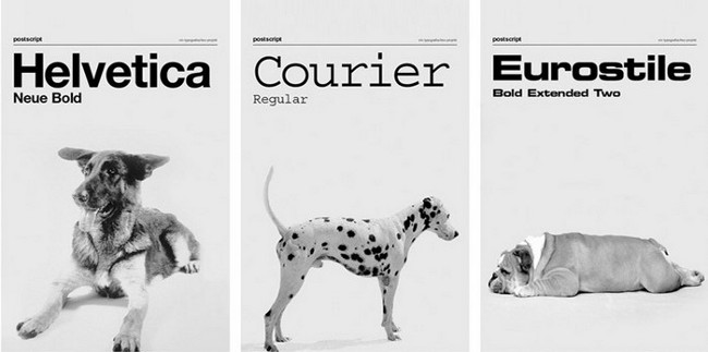 dog as fonts