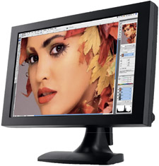 Quato Intelli Proof 242 - висок клас монитор за графична работа