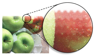 Mutoh i² - технология за истински живи отпечатъци