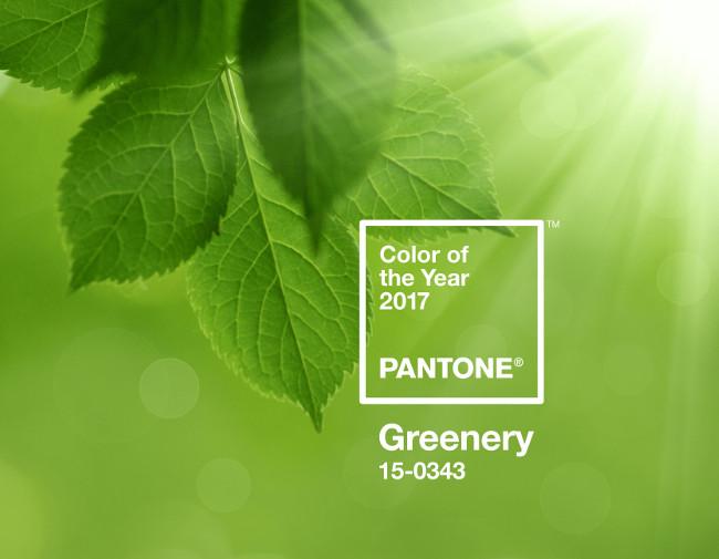 15-0343 Greenery е цвета на 2017 според Pantone