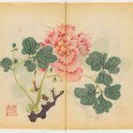 Първата книга в света, отпечатана чрез цветна ксилография