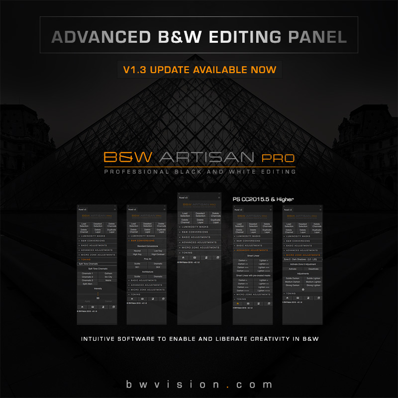Контрол над черно-белите снимки с B&W Artisan Pro