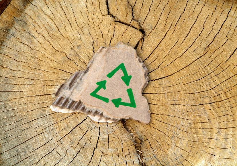 Пазарът за опаковки от рециклирана хартия ще нарасне до 139 милиарда долара през 2018