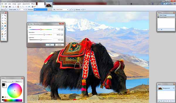 Редакция на изображения Paint.NET