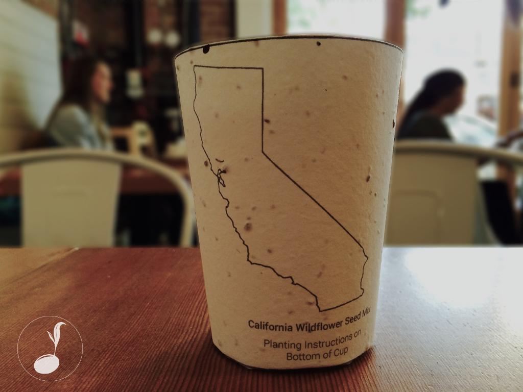 Хартиена чаша, която се превръща в дърво