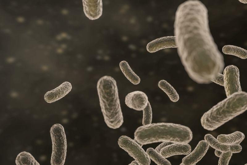Нови антибактериални лакове от Полихром